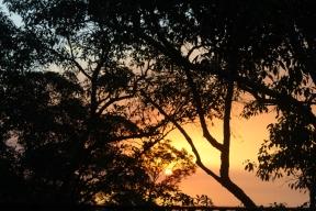 Sunset Fraser